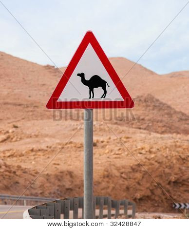 Triangular Road Sign With Warning For Crossing Camels