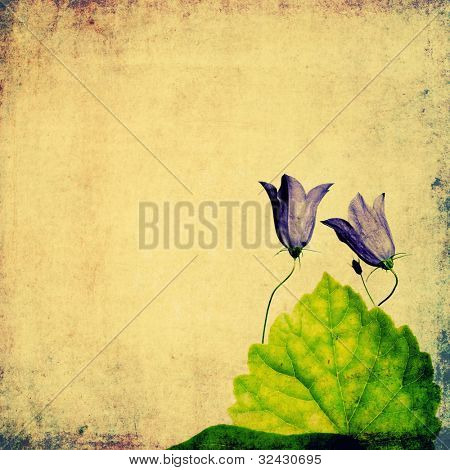 lovely floral background and design element