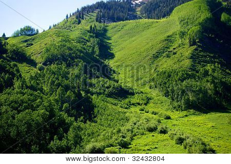 Green Mountainside