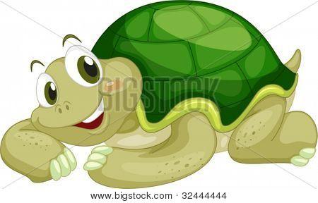 Tartaruga animada sobre um fundo branco