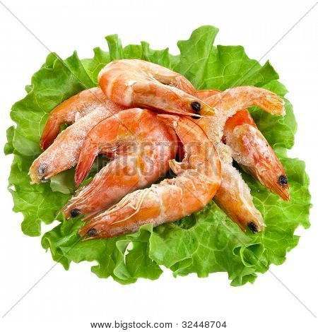 Fresh shrimp on a salad lettuce isolated on white