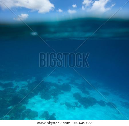Collage of underwater coral reef and sea surface with green island  on the background