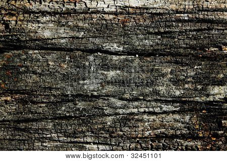 Burnt Wood Texture