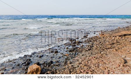 Red Sea Beach