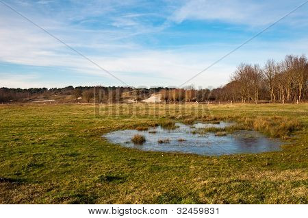 Dutch Dune Landscape With A Frozen Natural Pond