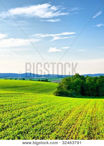 Cultivated Countryside