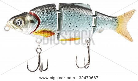 Fishing Bait Isolated