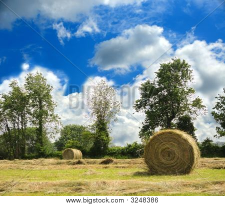 Haybales At Harvest