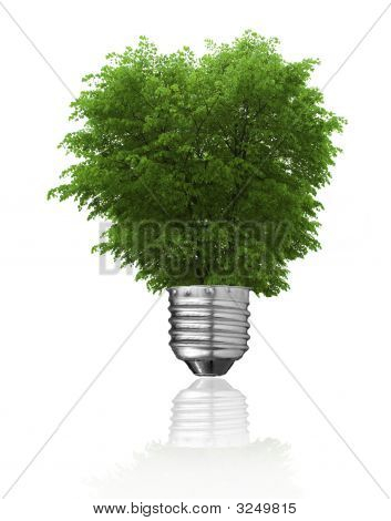 Concepto de energía renovable