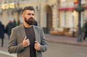 Man Bearded Hipster Stylish Fashionable Coat. Bearded And Cool. Barber Tips Maintain Beard. Hipster  poster