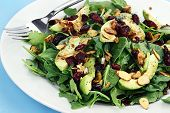 stock photo of cilantro  - Healthy spinach and arugula salad with cilantro dried cranberries spiced almonds and avocados served with a lite vinaigrette - JPG