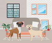Cute Little Dogs In The Livingroom Vector Illustration Design poster