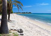 picture of nea  - Scenic beach at Chalkidiki peninsula of north Greece near Thessaloniki city - JPG