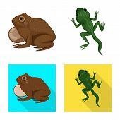 Vector Design Of Wildlife And Bog Icon. Set Of Wildlife And Reptile Stock Vector Illustration. poster