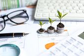 Growth Plants Economic On Stack Of Coins On Paper Analyze Performance Financial Graph Funding With C poster
