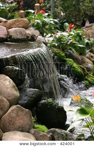 Tropical Water Fall