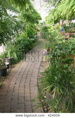 Greenhouse Cobblestone Path