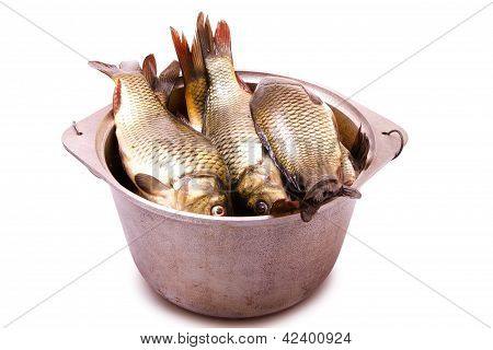 Fresh Fish In A Cast-iron Kettle