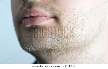 Close-Up Of Stubble.