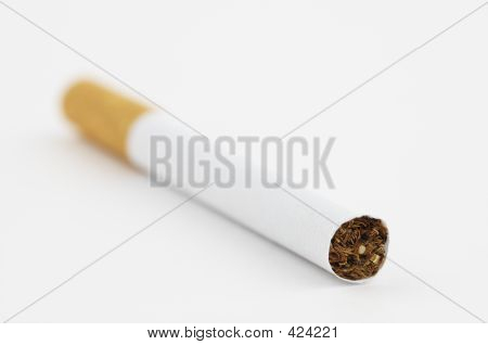 Cigarette In Close Up