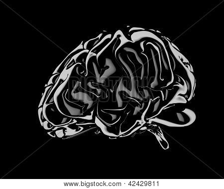 Still Life Render Of A Human Brain