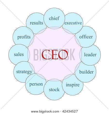 Ceo Circular Word Concept