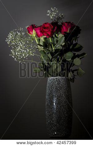 Roses under-lit