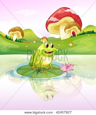 Frog on a lily pad with mushrooms