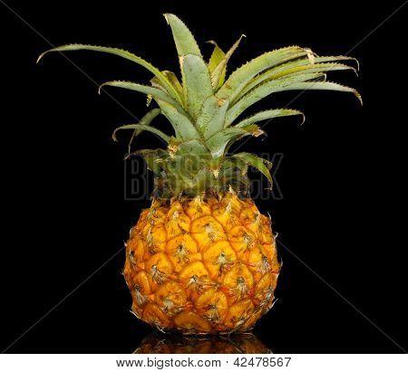 Ripe pineapple isolated on black