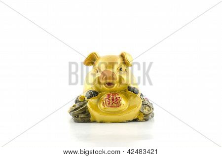 Gold Pig On Coin Isolated