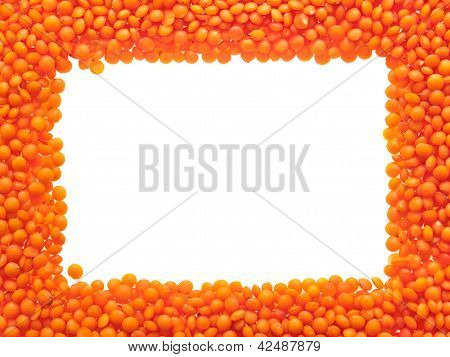 Red Lentils - Frame.