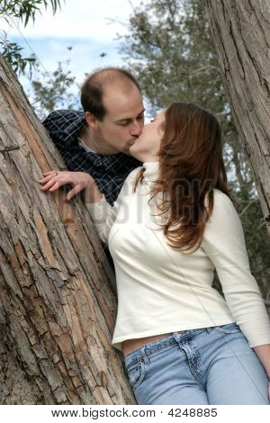 Couple Kissing In Tree