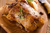 foto of roast duck  - duck roasted - JPG