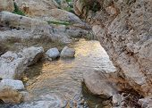 stock photo of jericho  - Small mountain creek Nachal Prat  - JPG