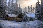picture of winter scene  - A nice winter scene - JPG