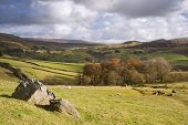 pic of errat  - View of Wharfe Dale from Norber Erratics in Yorkshire Dales National Park - JPG