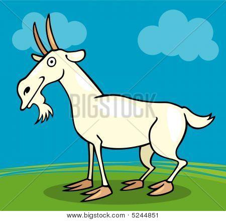 Farm Animals: Goat
