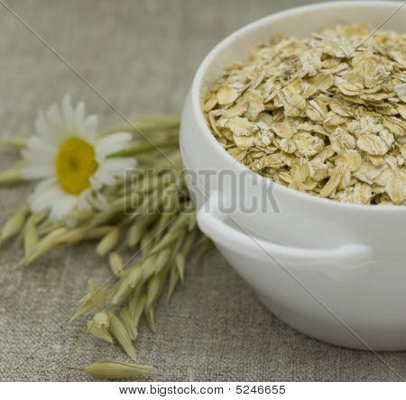Ears Of Cereals