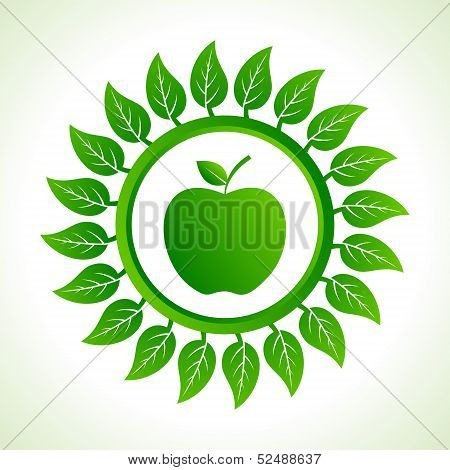 green apple organic food with leaf stock vector