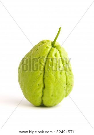 One Chayote Isolated On White
