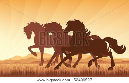 Horses In Field On Sunset Background Vector Silhouette Illustration