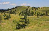 stock photo of velika  - Velika planina mountain pastureland - JPG