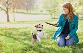 Girl playing with her beagle dog in autumn park