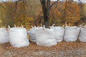 pic of leaf-blower  - bags with fallen down leaves in the park - JPG