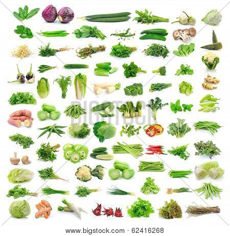 Cilantro, Red Cabbage, Zucchini, Eggplant, Bell Peppers, Kaffir Lime Leaves, Pepper, Cucumber, Mushr