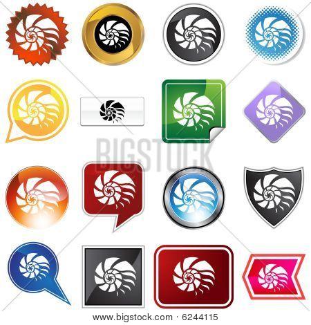 conjunto de variedade de Shell