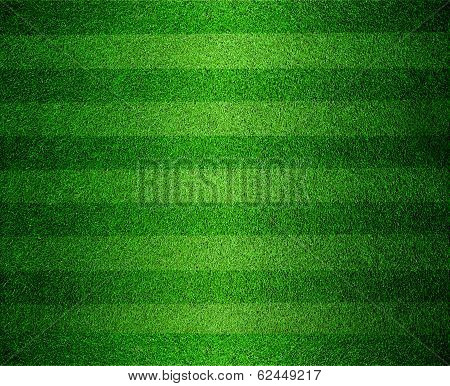Green Lined Football Or Soccer Field