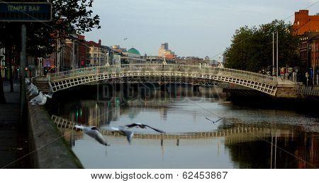 Famous Ha'penny Bridge in Dublin, Ireland
