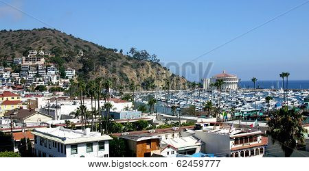 Catalina Island Harbor