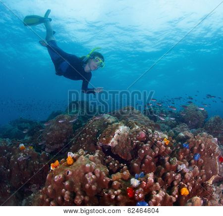 Free diver finning over coral reef in tropical sea